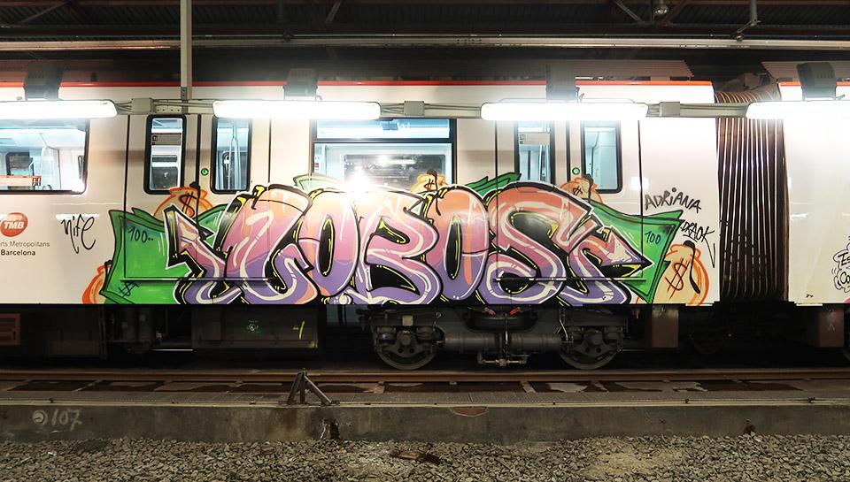 graffiti writing trains subway barcelona spain wholecar lobos rip